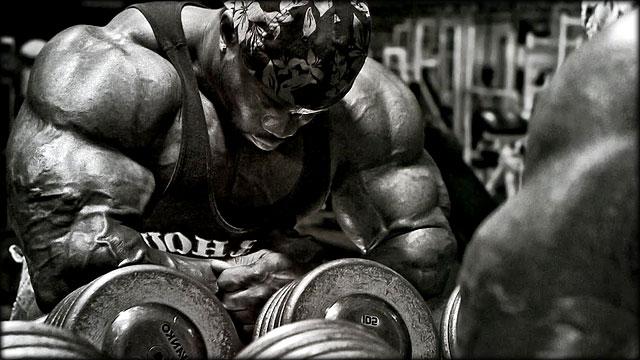 Volume-Muscular
