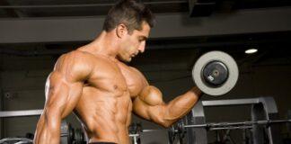Treino de Bíceps Fernando Sardinha