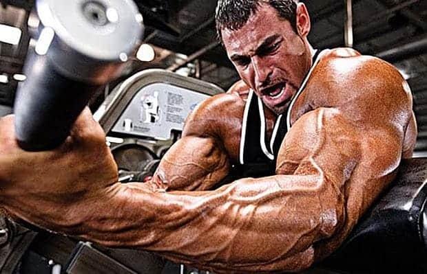 hipertrofia_muscular