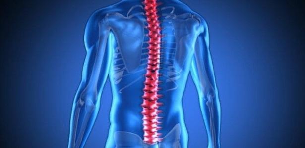 medula-coluna-vertebral-corpo-humano