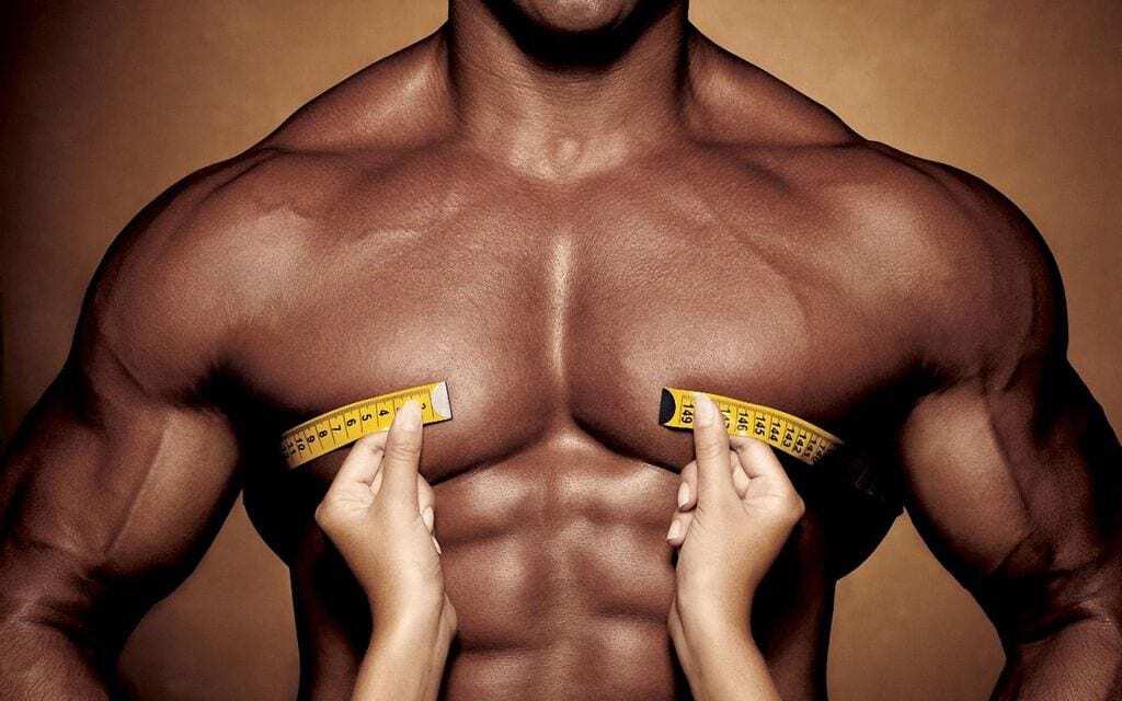 musculos-maiores