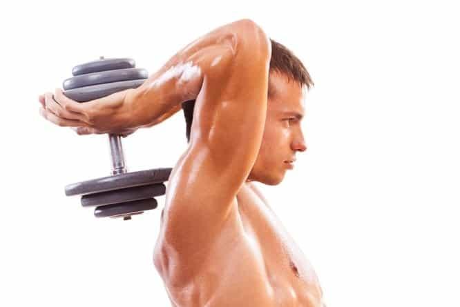 treino-de-triceps-iniciante