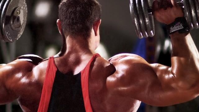Contruindo Ombros Fortes