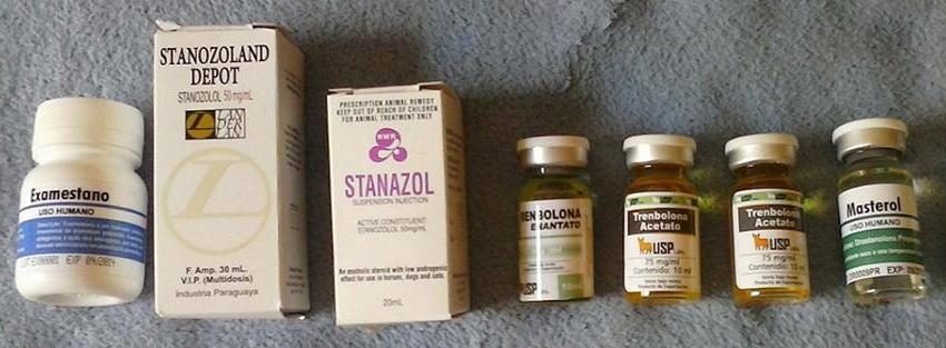 stanozolol comprimido ciclo homem