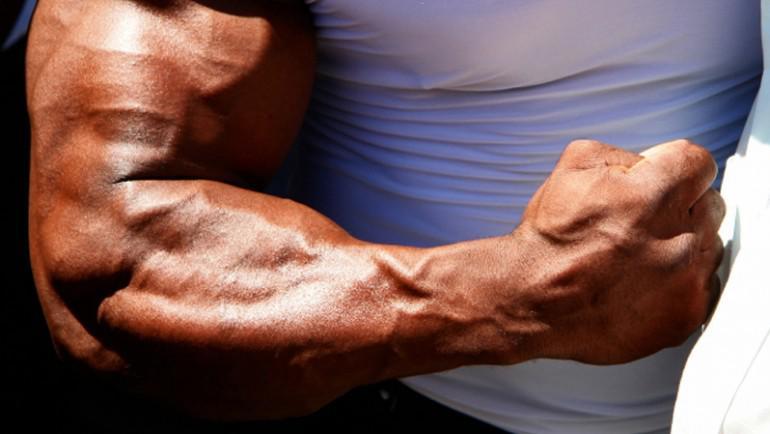 Entenda como funciona o Bíceps Braquial