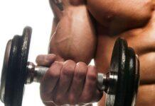 treino bíceps