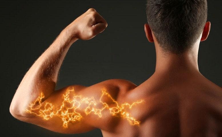 Beta-Alanina pode reduzir fadiga