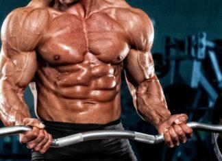 construindo-biceps-de-aco
