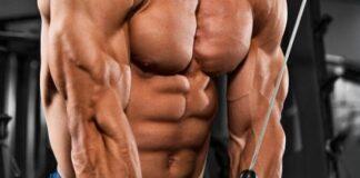 construindo-triceps-de-aco