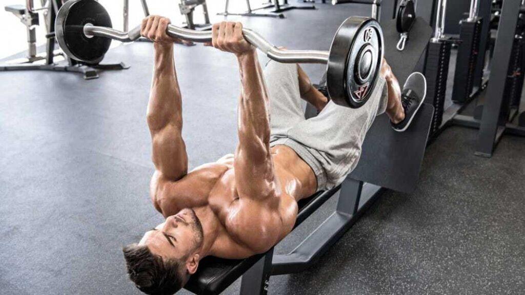 Construindo Tríceps Trincados