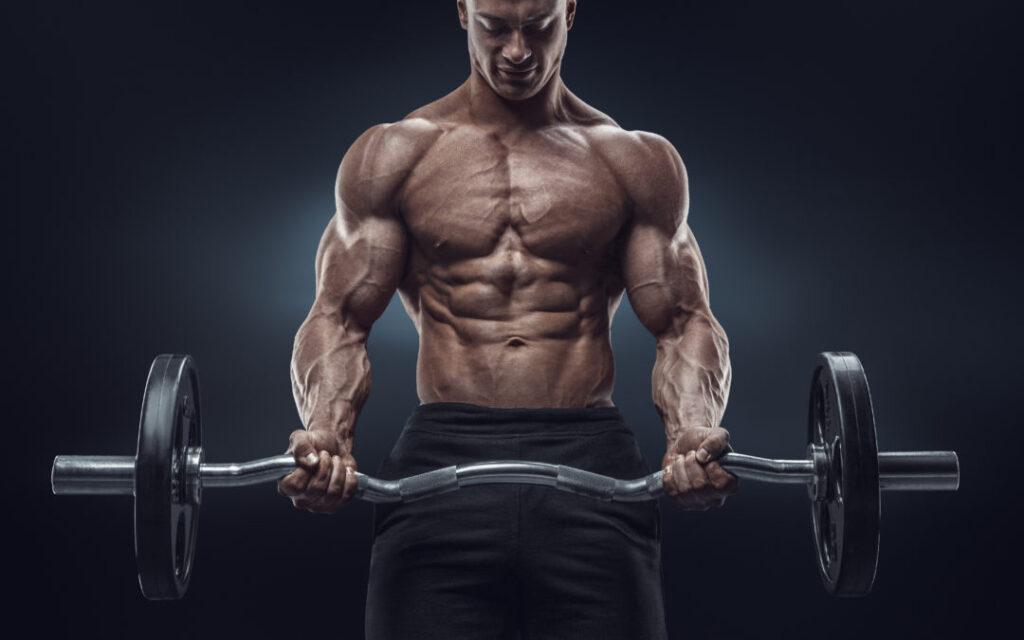 treino para trinca -biceps
