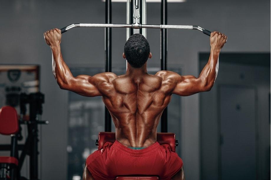 Construindo Dorsais (costas) Trincadas