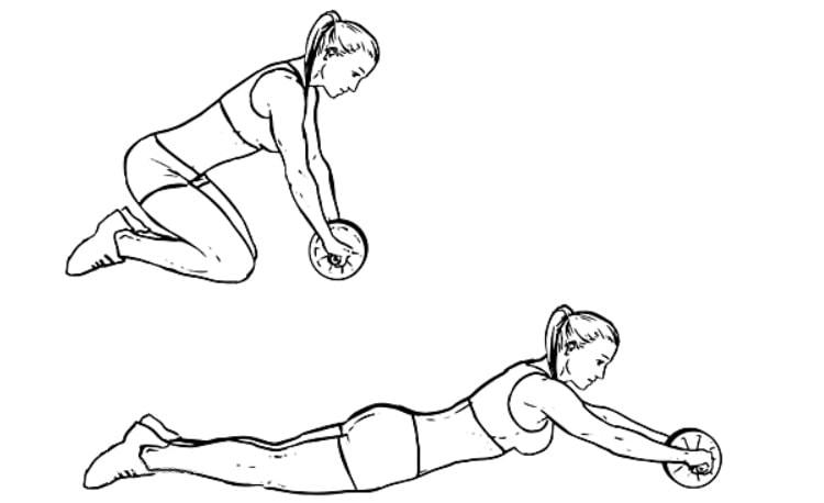 Exercícios para abdômen Power Wheel