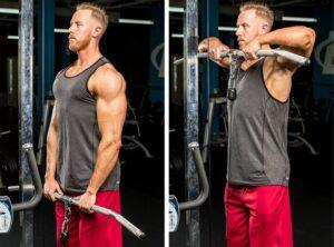Sequência de exercícios para treino de Ombros