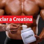como ciclar creatina