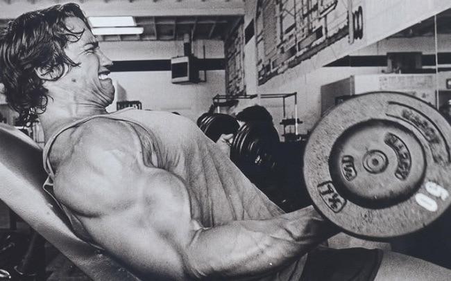 Arnold Schwarzenegger Treino