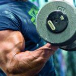 Benefícios da Canela no treino