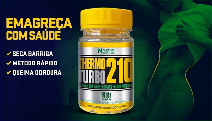 Thermo Turbo 210