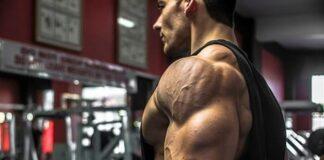 exercício abdução no plano da escápula para treino de ombros