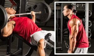 Treino para Peito e Tríceps (para avançados)