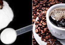 Café corta o efeito da creatina Mito ou verdade