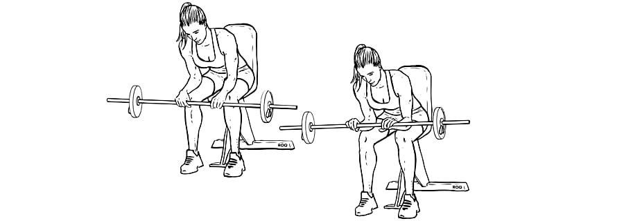 Exercícios para antebraços Rosca de Punho Invertido