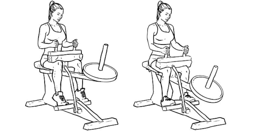 Exercícios para panturrilhas Elevação de panturrilha sentado