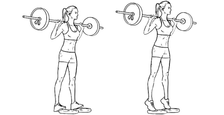 Exercícios para panturrilhas elevação de panturrilha com barra