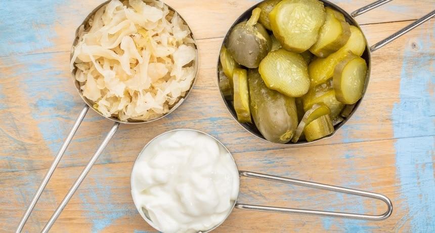 Alimentos com Probióticos