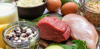 Lista de Alimentos Ricos em Proteínas para complementar sua Dieta
