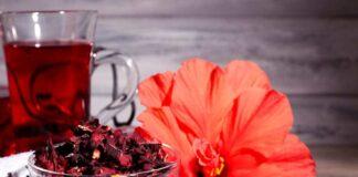 Como fazer o Chá de Hibisco para Emagrecer