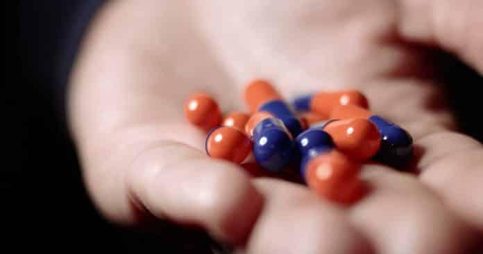 Suplementos Vitamínicos que ajudam na Memória e na Concentração