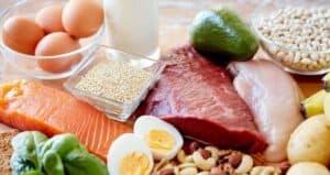 10 alimentos para aumentar o consumo de proteínas para (hipertrofia)