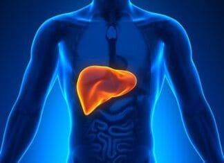 Whey Protein faz mal ao Fígado?