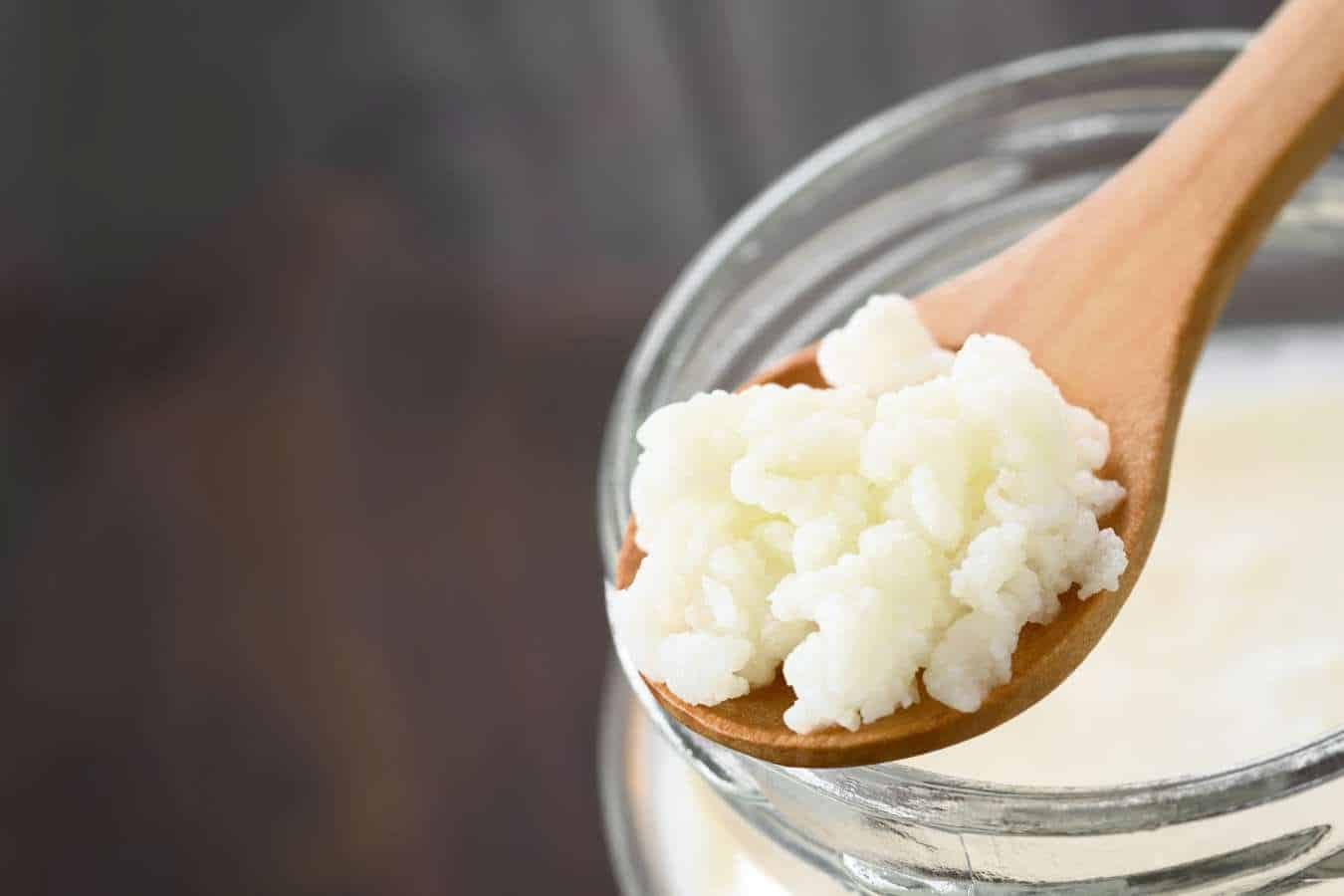Como cuidar do kefir de leite? Cuidados para o melhor aproveitamento do Kefir