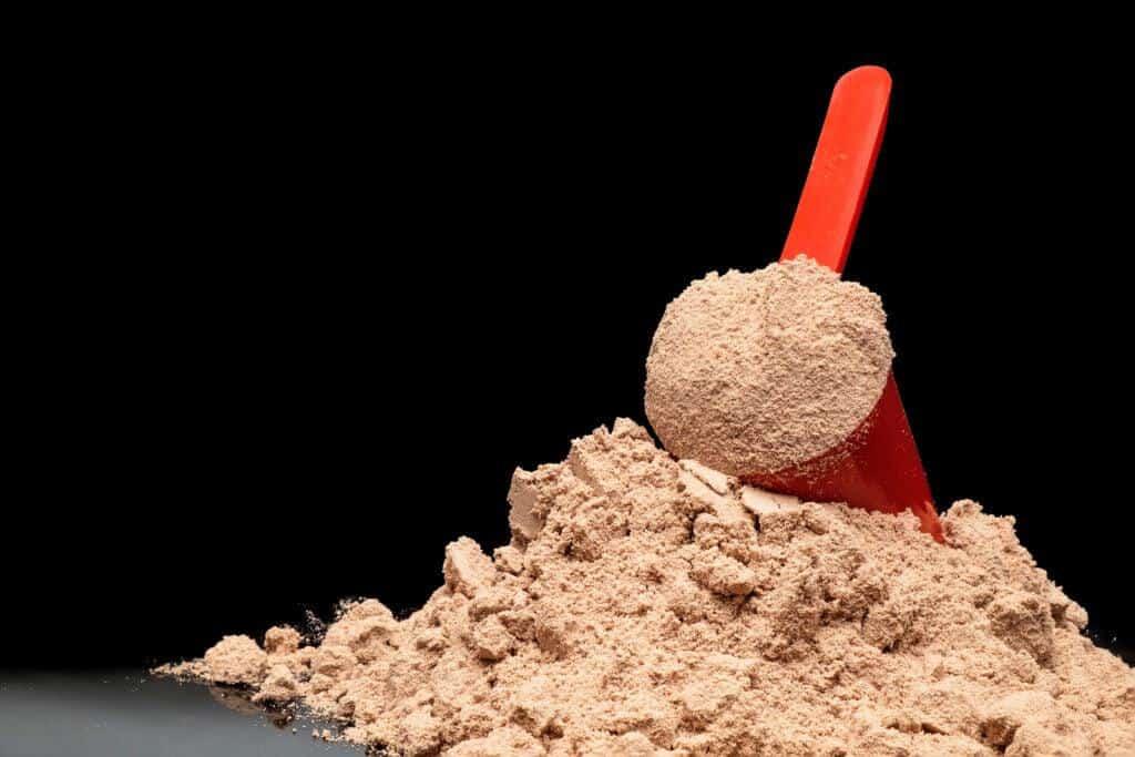 Benefícios do Whey Protein para Iniciantes