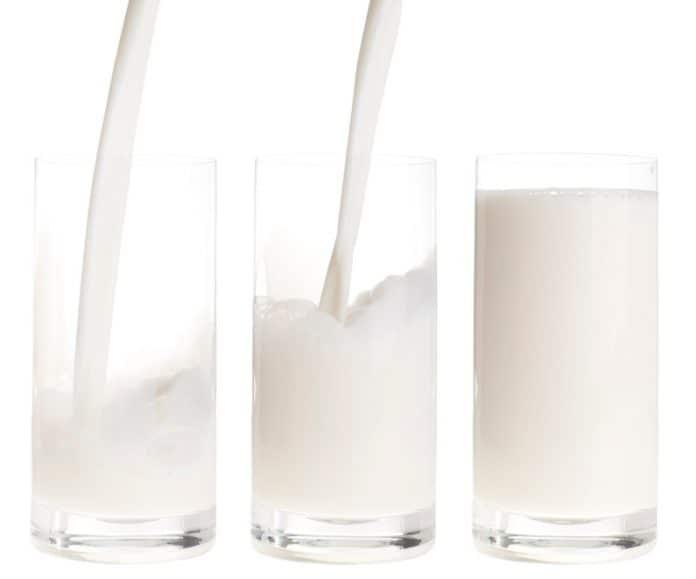 O leite corta o Efeito do Whey Protein?