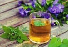 Chá para Desinchar a Barriga (confira duas receitas caseiras)