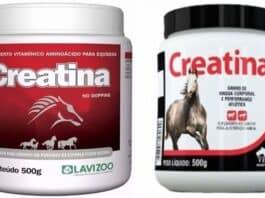 Uso da Creatina para Cavalo