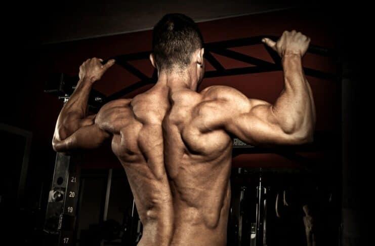Como evitar a perda de massa muscular?